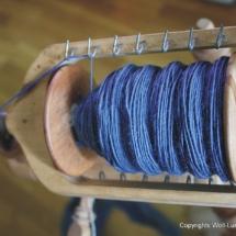 blaue-spindel